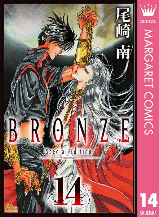 BRONZE -Special Edition- 14拡大写真