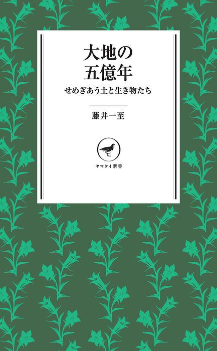 ヤマケイ新書 大地の五億年 せめぎあう土と生き物たち-電子書籍-拡大画像