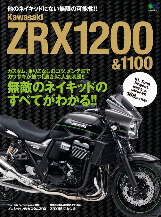 Kawasaki ZRX1200&1100拡大写真