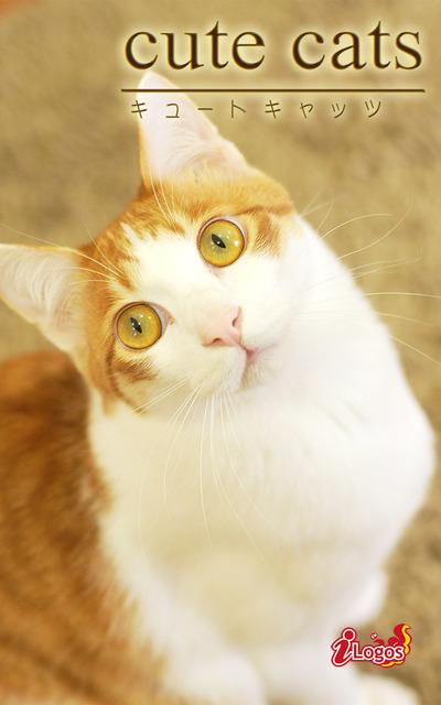 cute cats18 日本猫-電子書籍