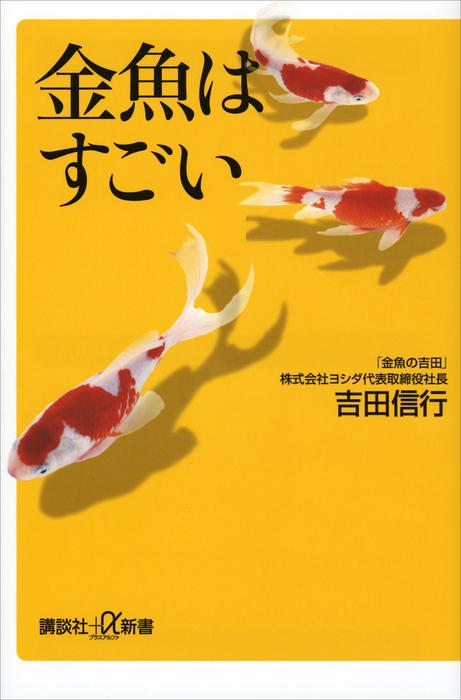 金魚はすごい拡大写真