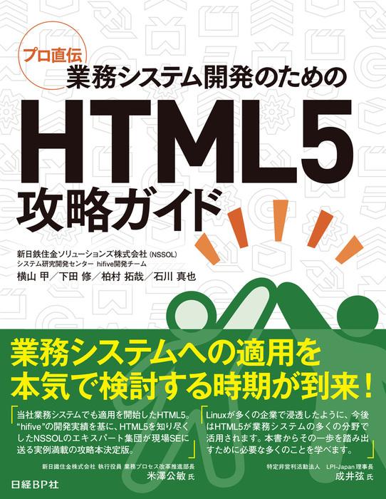 プロ直伝 業務システム開発のためのHTML5攻略ガイド拡大写真