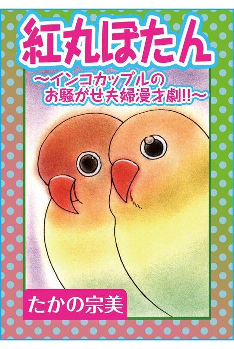 紅丸ぼたん~インコカップルのお騒がせ夫婦漫才劇!!~-電子書籍-拡大画像