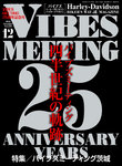 VIBES【バイブズ】2016年12月号-電子書籍