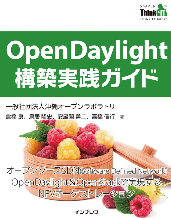 OpenDaylight構築実践ガイド-電子書籍-拡大画像