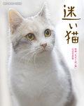 迷い猫-電子書籍