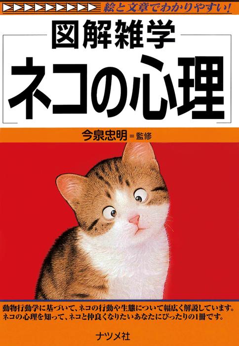 ネコの心理拡大写真
