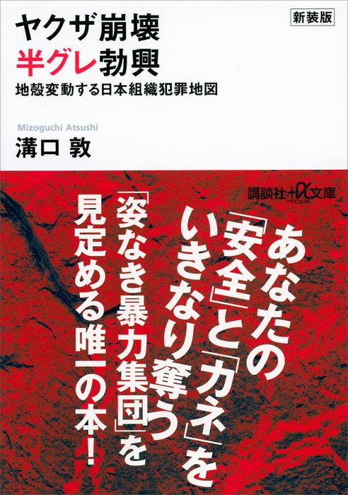 新装版 ヤクザ崩壊 半グレ勃興 地殻変動する日本組織犯罪地図拡大写真