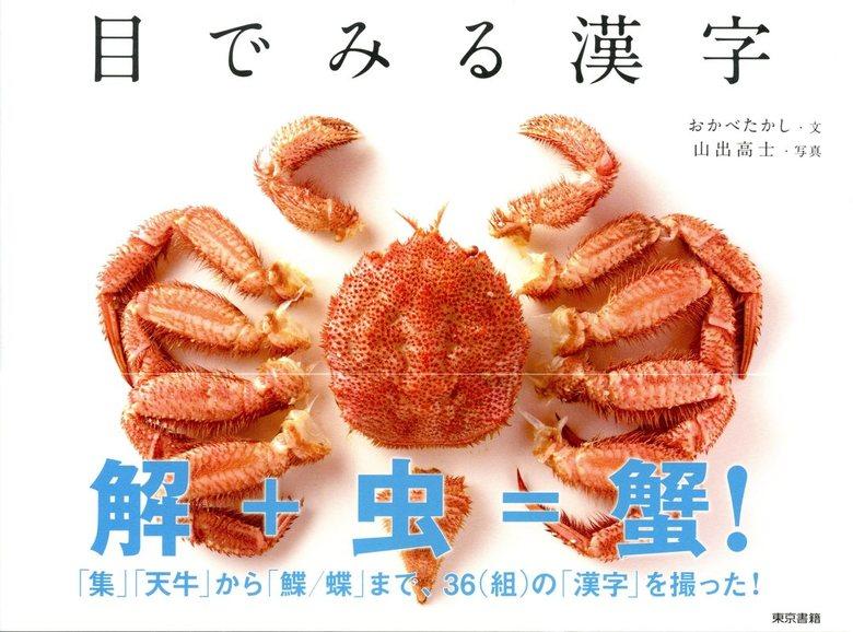 目でみる漢字拡大写真