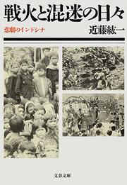 戦火と混迷の日々 悲劇のインドシナ-電子書籍