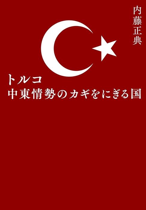 トルコ 中東情勢のカギをにぎる国拡大写真