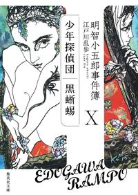 明智小五郎事件簿10