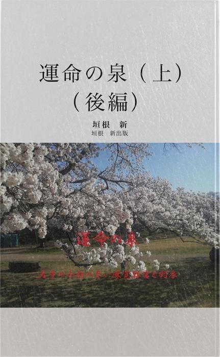 運命の泉 上 (後編)-電子書籍-拡大画像