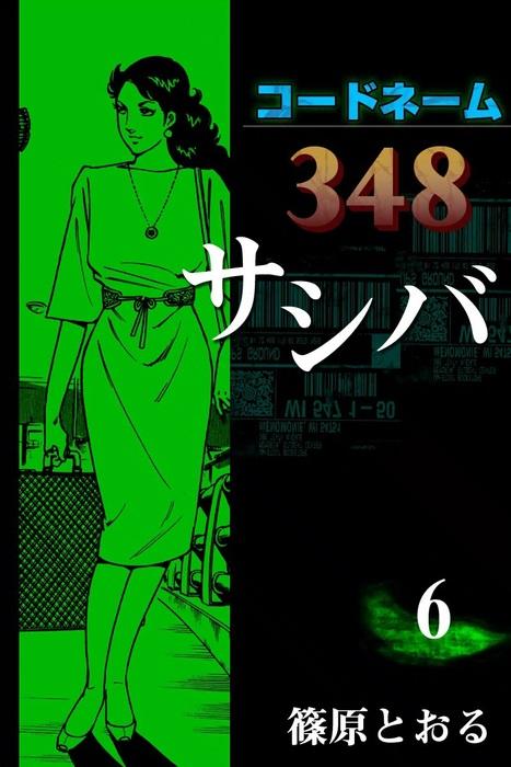 コードネーム348 サシバ (6)拡大写真