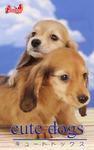 cute dogs29 ダックスフンド-電子書籍