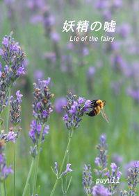 妖精の嘘-電子書籍