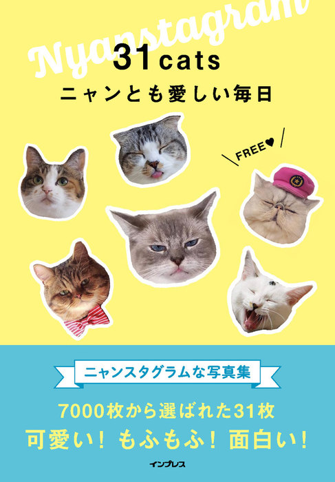 31cats ニャンとも愛しい毎日拡大写真
