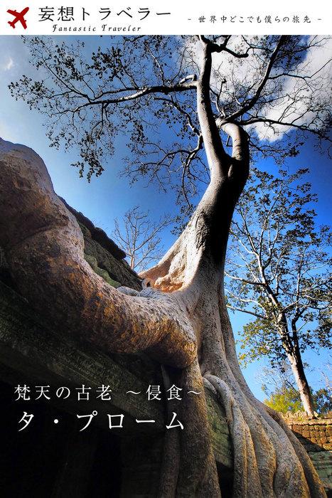 妄想トラベラー 梵天の古老~侵食~ タ・プローム拡大写真