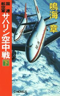 国連航空軍 サハリン空中戦 下