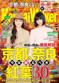 KansaiWalker関西ウォーカー 2016 No.22-電子書籍