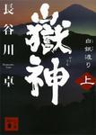 嶽神(上) 白銀渡り-電子書籍