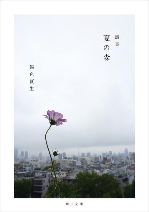 【写真詩集】夏の森拡大写真