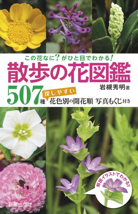 この花なに?がひと目でわかる! 散歩の花図鑑拡大写真