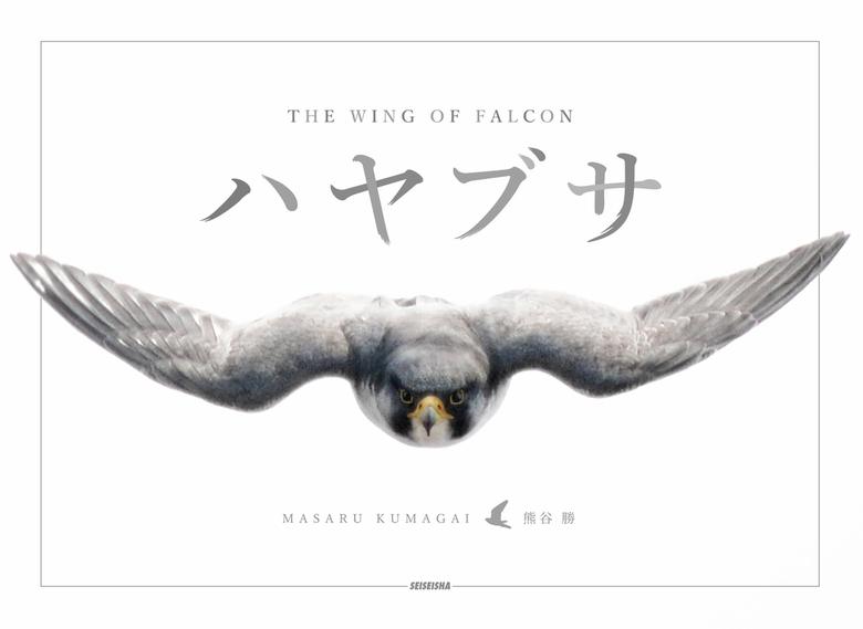 ハヤブサ THE WING OF FALCON-電子書籍-拡大画像