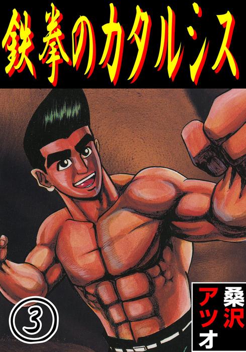 鉄拳のカタルシス 3-電子書籍-拡大画像