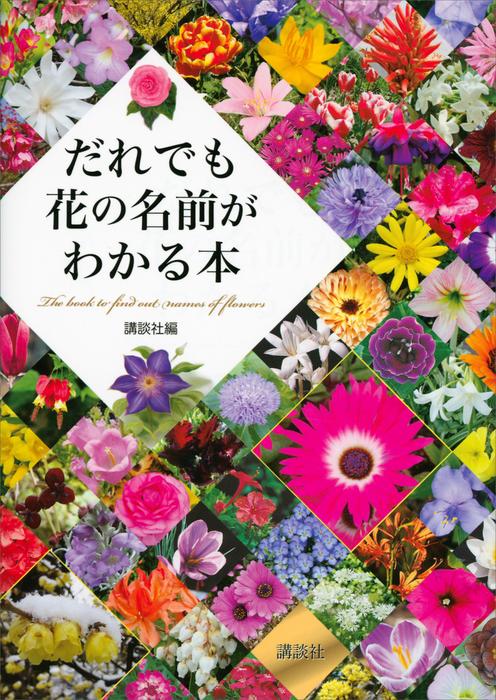 だれでも花の名前がわかる本拡大写真