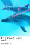 イルカさんがいっぱいpart.2-電子書籍