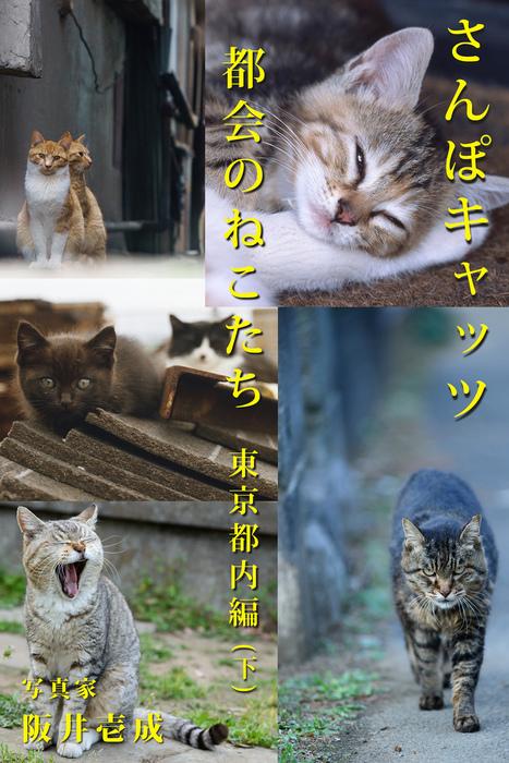 さんぽキャッツ 都会のねこたち 東京都内編(下)拡大写真