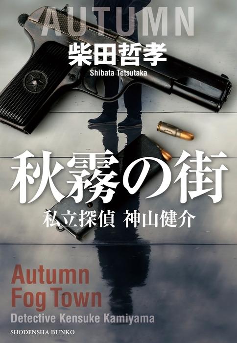 秋霧の街 私立探偵 神山健介拡大写真