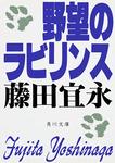 野望のラビリンス-電子書籍