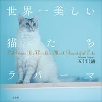 世界一美しい猫たち ラパーマ~LaPerms: The World's Most Beautiful Cats~