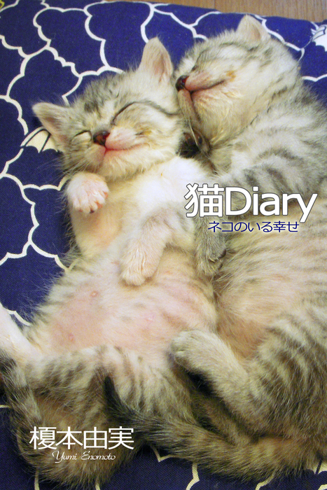 猫Diary ネコのいる幸せ拡大写真