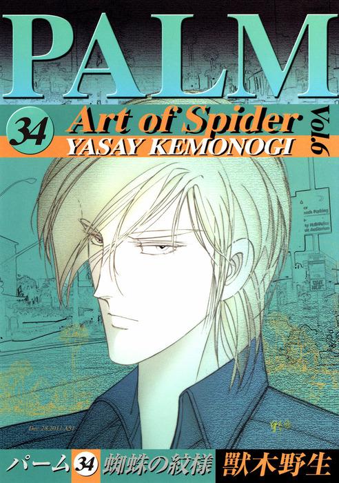 パーム (34) 蜘蛛の紋様 VI-電子書籍-拡大画像