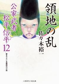 領地の乱 公家武者 松平信平12