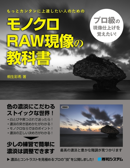 モノクロRAW現像の教科書拡大写真