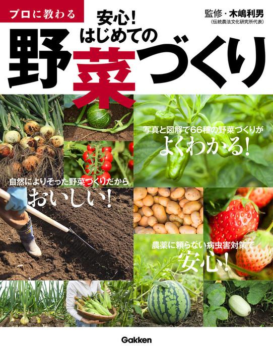 プロに教わる 安心! はじめての野菜づくり拡大写真