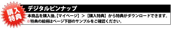 金子賢 購入特典美筋画像 詳細バナー