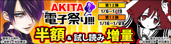 AKITA電子祭り 冬の陣 第12-13弾