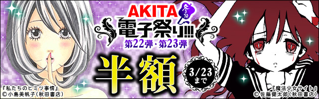 AKITA電子祭り 冬の陣 第22弾