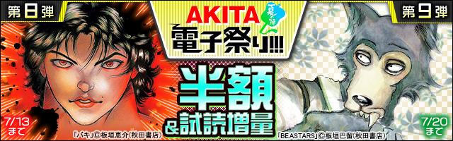 【AKITA電子祭り 夏の陣】第8~9弾