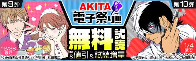【AKITA電子祭り 冬の陣】第9弾&第10弾