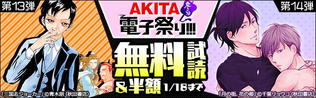 【AKITA電子祭り 冬の陣】第13弾&第14弾