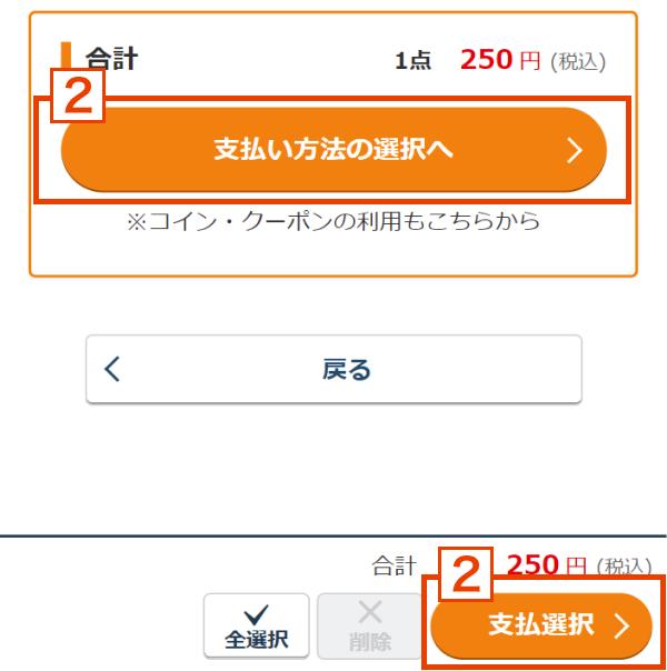 (2) カート画面の「支払い方法の選択へ」ボタンを押してください。