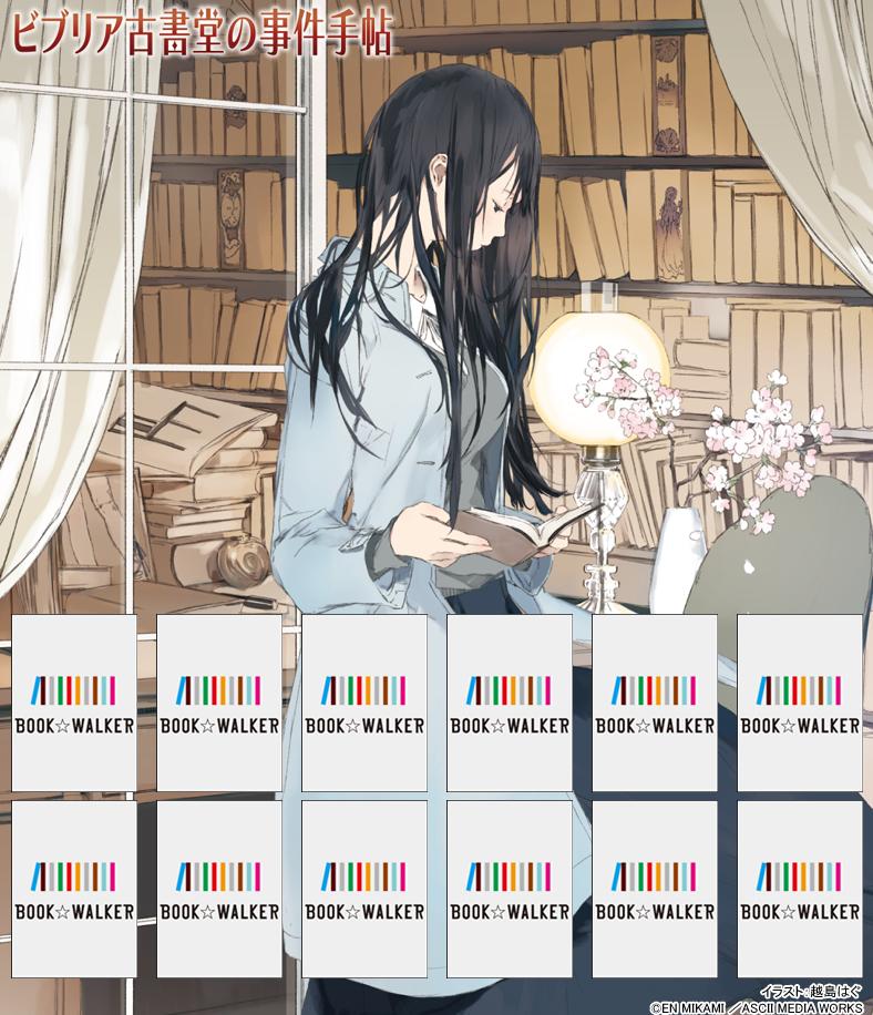『ビブリア古書堂の事件手帖4 ~栞子さんと二つの顔~』きせかえ本棚【購入特典】-電子書籍