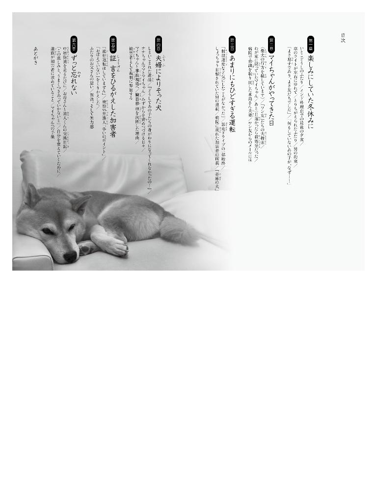 世の中への扉 柴犬マイちゃんへの手紙 無謀運転でふたりの男の子を失った家族と愛犬の物語-電子書籍