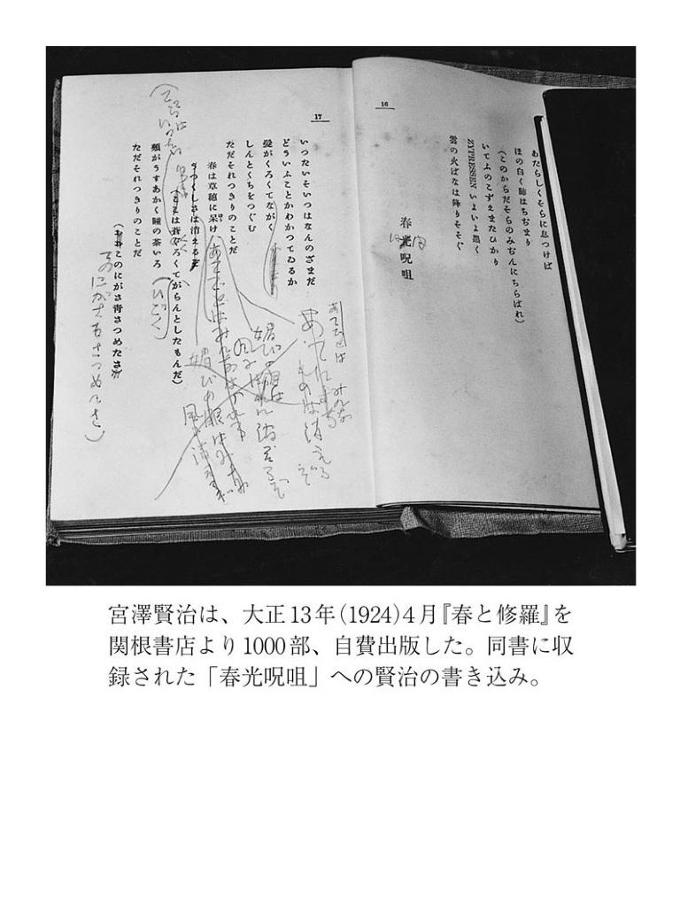 慈悲をめぐる心象スケッチ-電子書籍